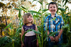 Children of the Corn. Oberon. NSW. 2013.