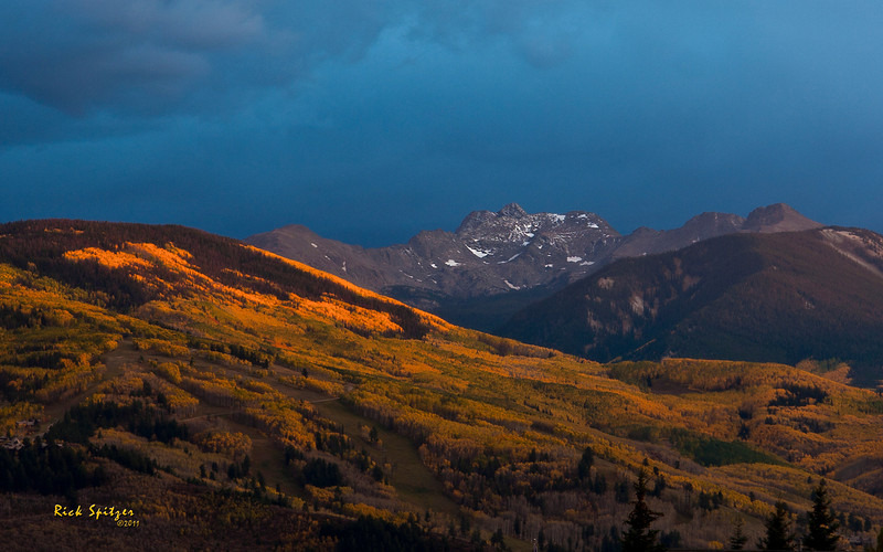 Aspen near Twilight