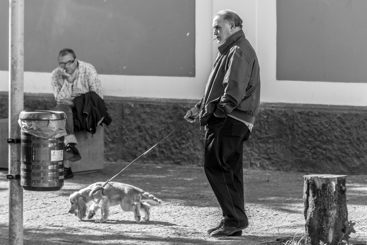 Naples Ercolano Smoking Dog Walker