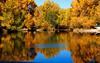 Pond in Buena Vista