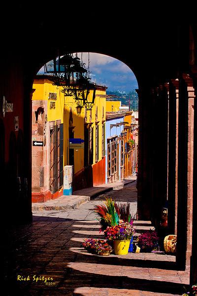 Flower Vendor in San Miguel de Allende
