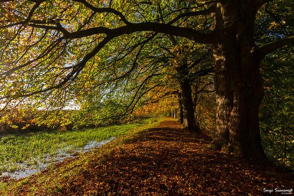 Everdingerwaard, Netherlands