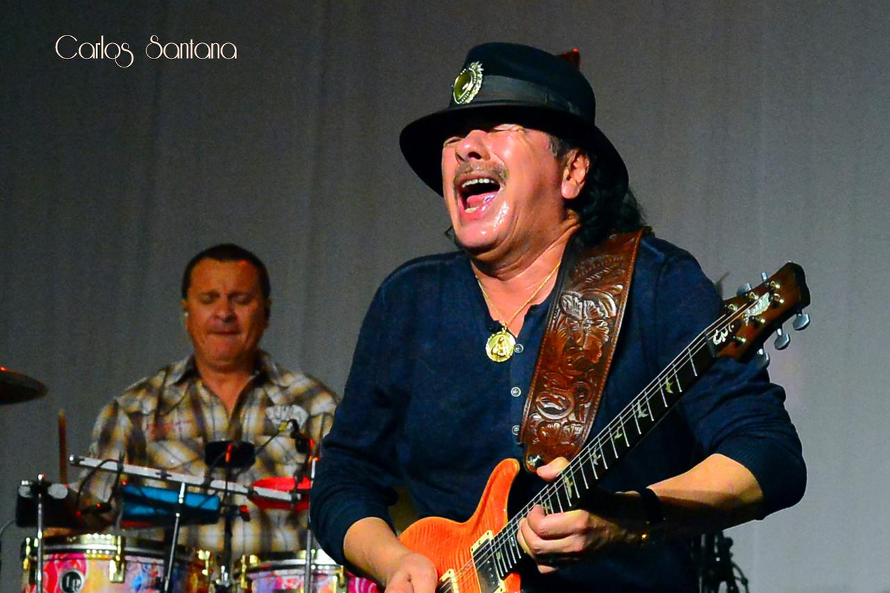 Carlos Santana @ BluesFest 2013