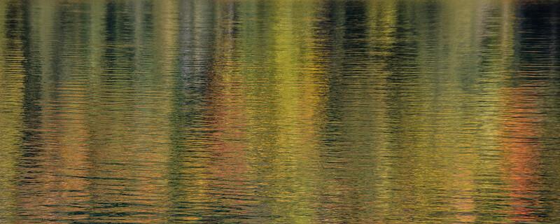 Reflection 3