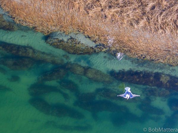 Narrow River Aerial