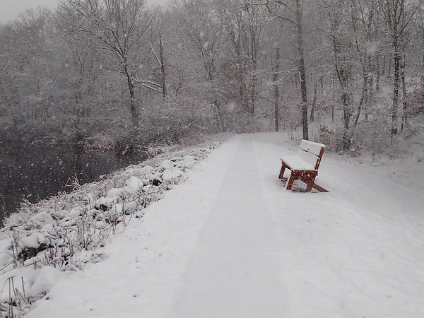 Lonely Snowy Bench