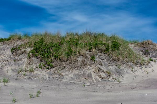 Block Island Dunes