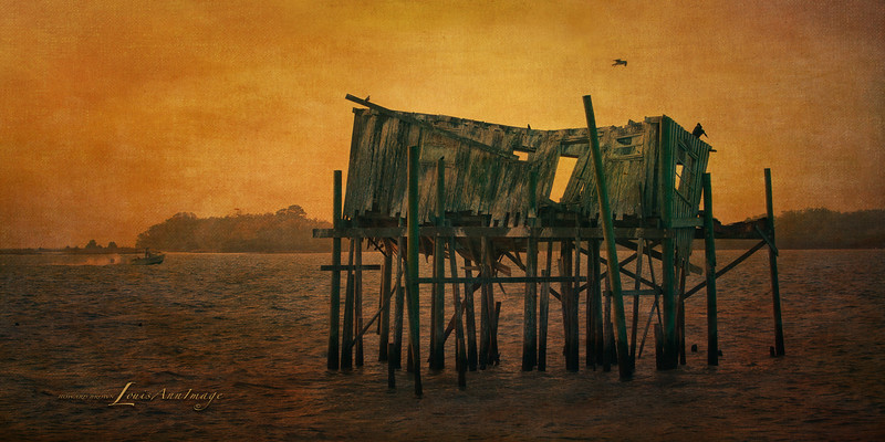 Old Florida Morning... Honeymoon House, Cedar Key