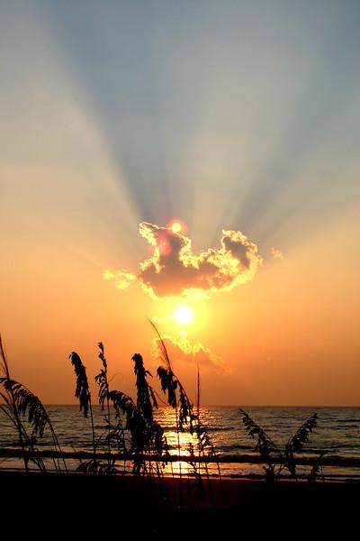The seashore at dawn, Jekyll Island, Georgia