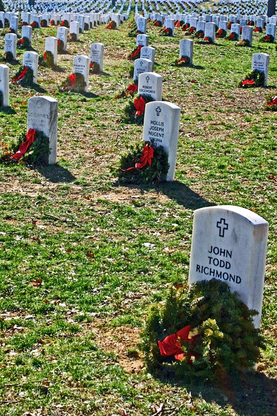 Contri Date: Memorial Day - 2011 - In honor of those who gave the supreme sacrifice - From our archives - January 26, 2008,  Arlington National Cemetary, Arlington, Virginiam