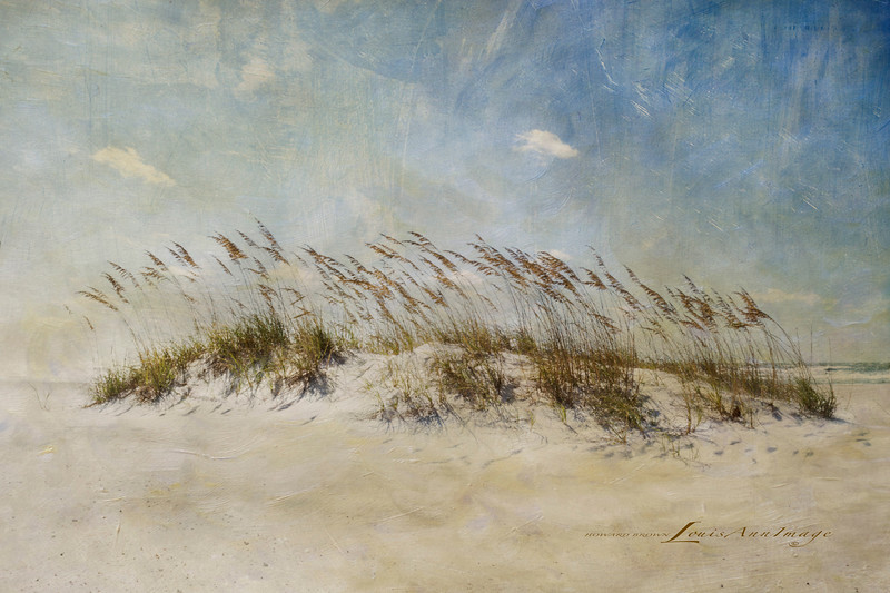 'Wind II...'<br /> By the sea - Anna Maria Island, Florida