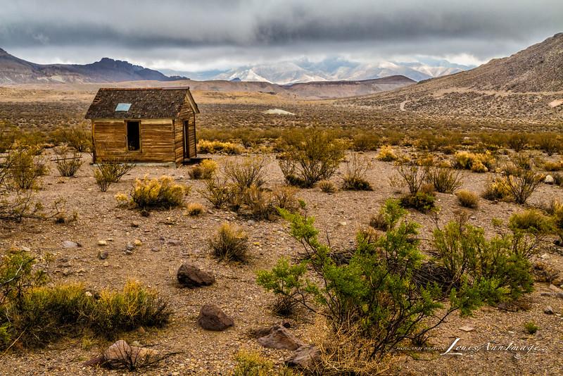 Ghost Shanty ~ Rhyolite, Nevada