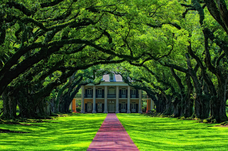 """(Unframed) Located on the Mississippi River between the historic Louisiana cities of New Orleans and Baton Rouge, Oak Alley Plantation has been called the """"Grande Dame of the Great River Road"""".  Another marvelously maintained step back into Louisiana's storied past.."""