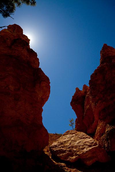 Upward Walls. Bryce Canyon, Utah.