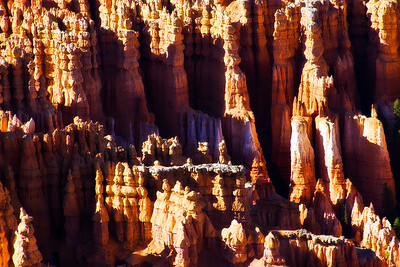 Near Wall Street.  Bryce Canyon, Utah.
