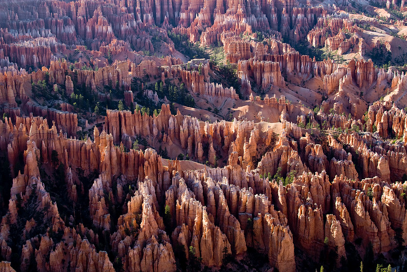 The Amphitheater. Bryce Canyon, Utah.