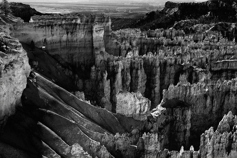 Light & Shadow - In the morning. Bryce Canyon, Utah.
