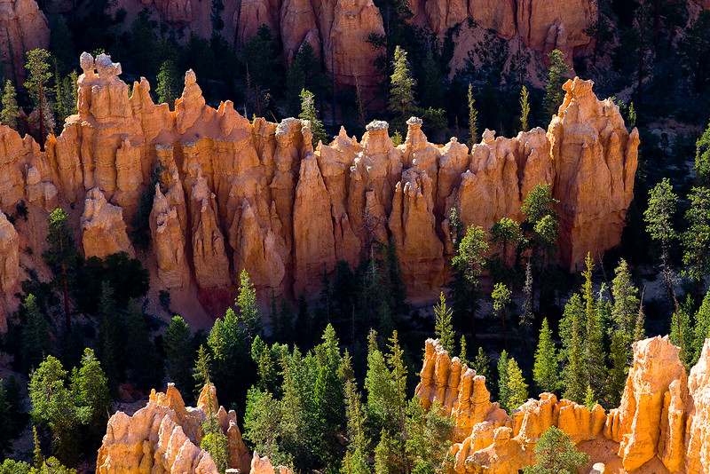 The HooDoo.. Bryce Canyon, Utah.
