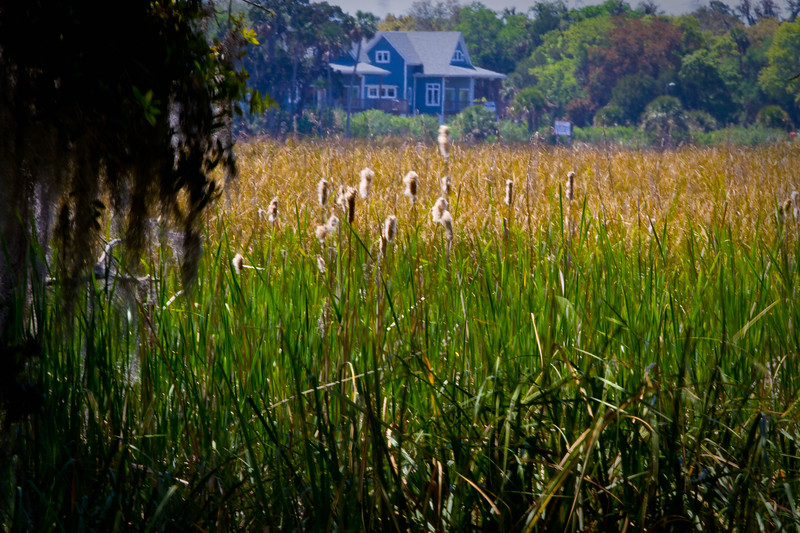 Old home through the marsh..
