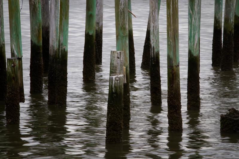 Old pilings..