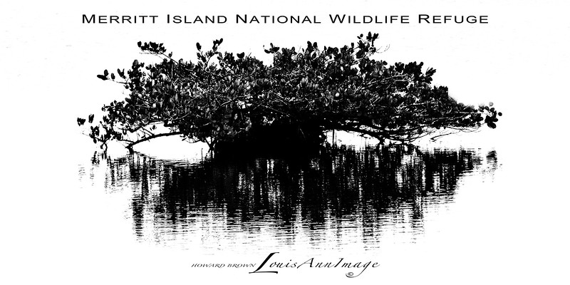 Merritt Island National Wildlife Refuge, Florida