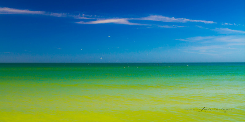 'Gulf Hues...'<br /> By the sea - Anna Maria Island, Florida