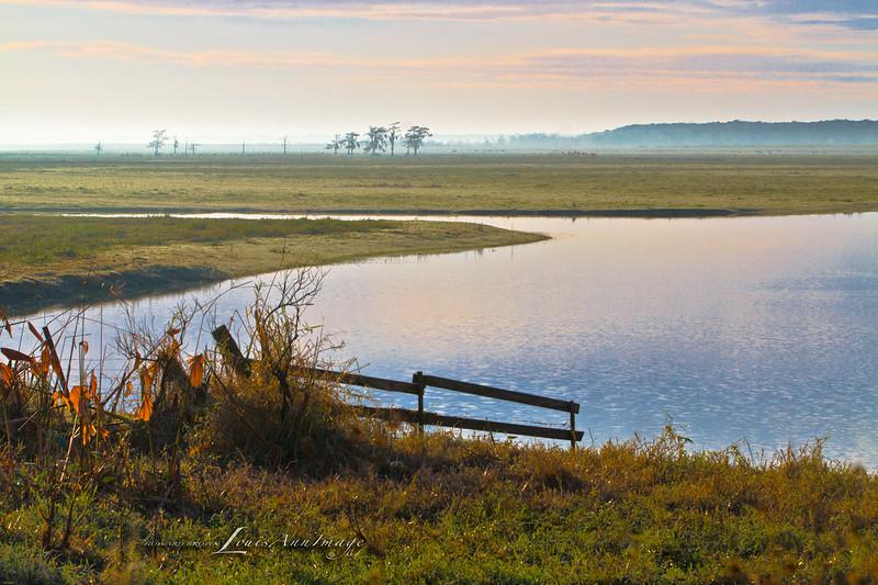 Lower St Johns River Basin - East Central Florida
