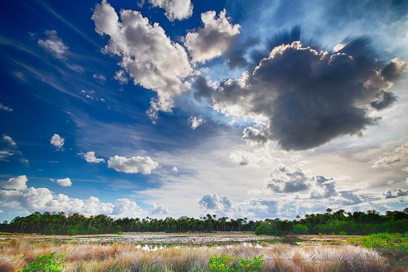 Big Sky - Merritt Island National Wildlife Refuge, Florida