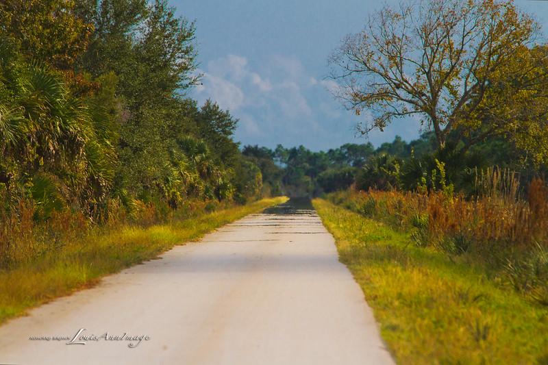 Mirage - Merritt Island National Wildlife Refuge, Florida