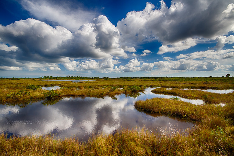 Sky & Water - Merritt Island National Wildlife Refuge, Florida