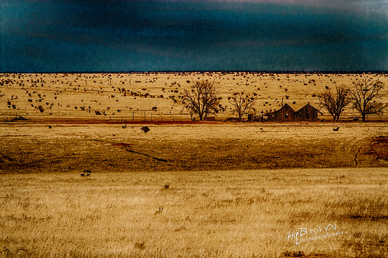'Rolling hills of grass..' - Hwy 41, Stanley, New Mexico - South of Santa Fe and Pecos...