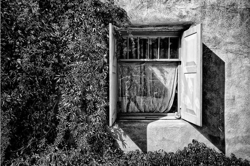 'The Window and I...'  self Portrait.<br /> Ranchos de Taos, New Mexico