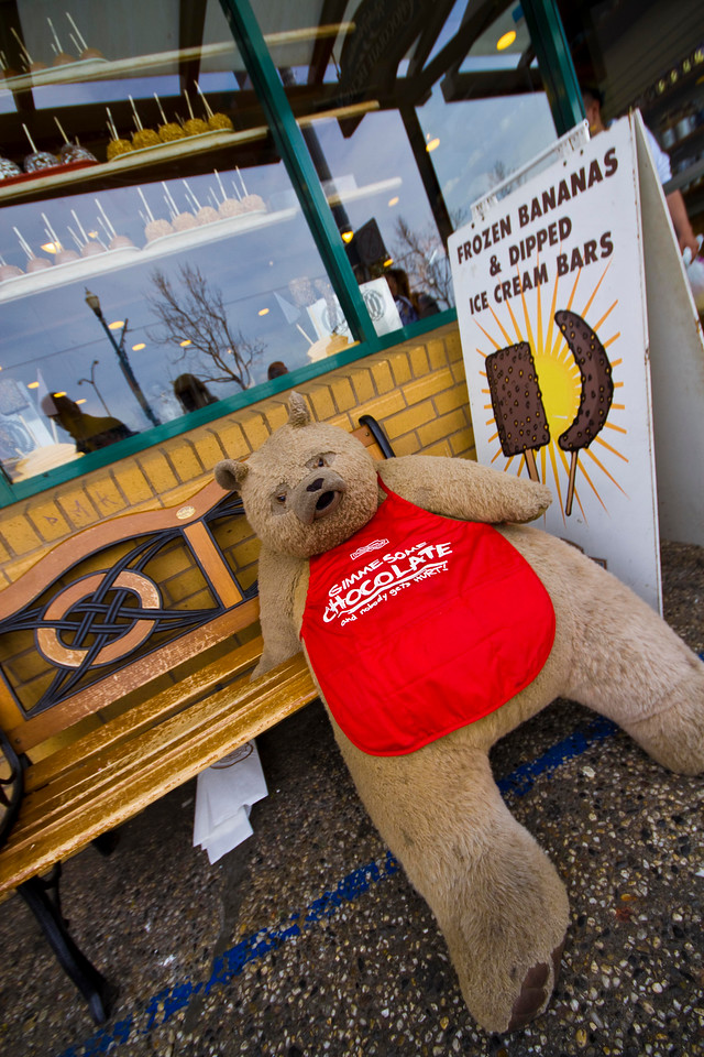 Giant Teddy.. Fisherman's wharf.