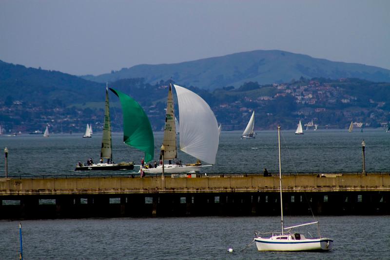 Sail! San Francisco Bay
