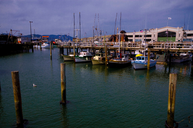 Vintage Fishing Vessels - San Francisco Piers