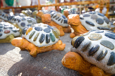 """Invasion of the Turtles"" Symmetry in Merchandizing"