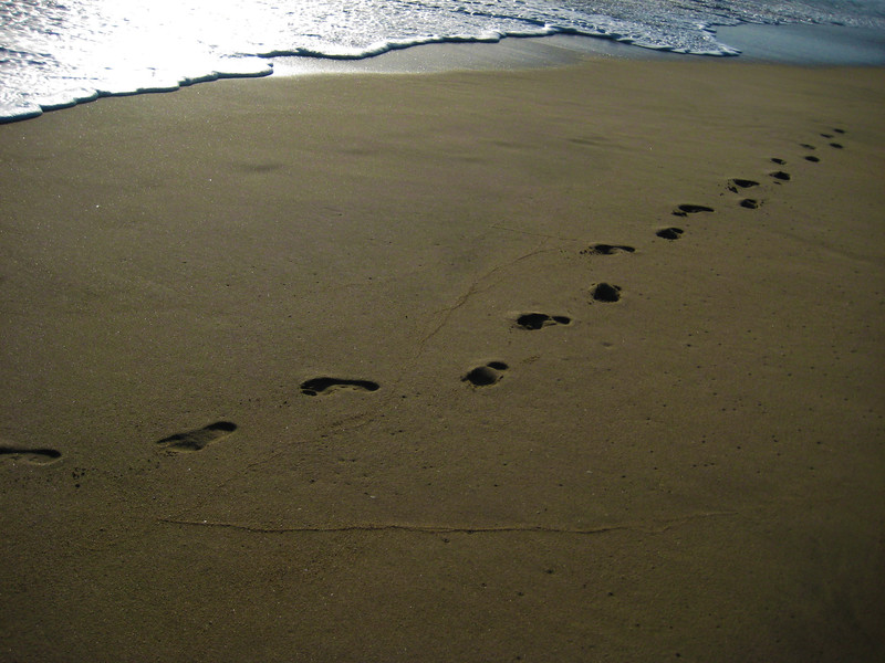 """Follow in her footsteps"" - Half Moon Bay - Our 35th.. - Canon Elph"
