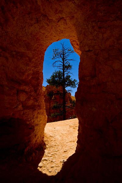 Entrance to Queens Garden Trail.. Bryce Canyon, Utah.