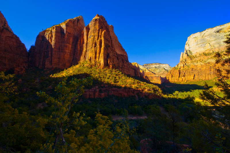 Cathedral Mountain - From the Lower Emerald Pools Trail. Zion National Park, Utah.