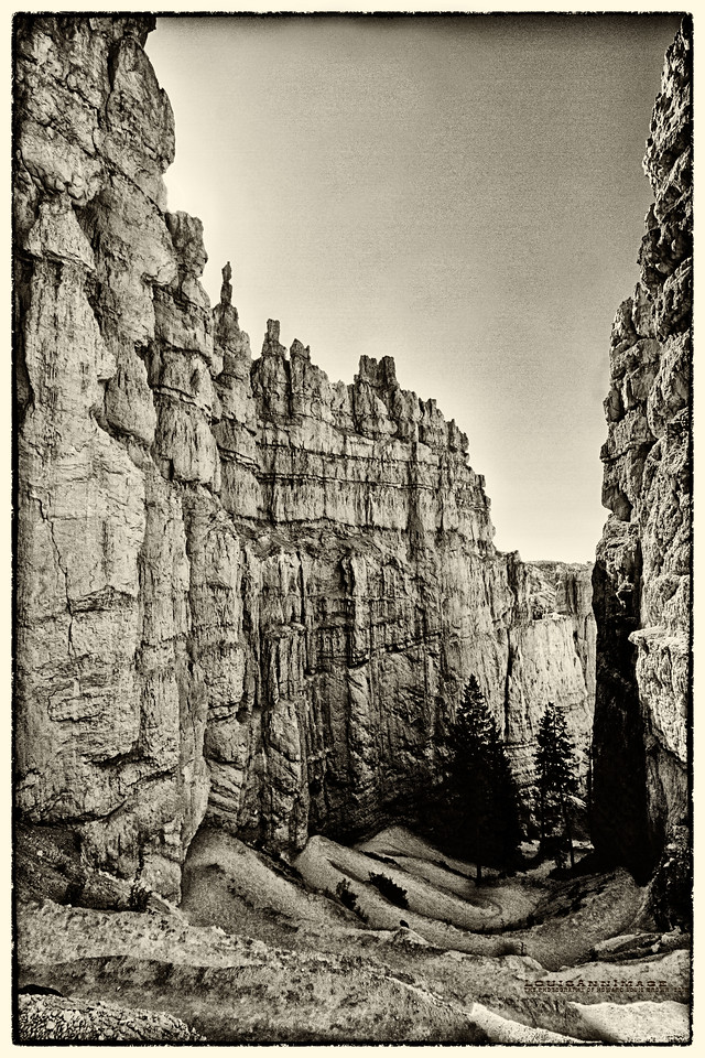 The Fins of Bryce - Bryce Canyon National Park, Utah