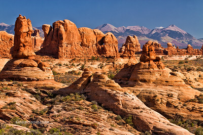 "Arches NP, Moab, UT See More of Arizona & Utah - ""The Southwestern Sun' here: http://smu.gs/RfQCCf"