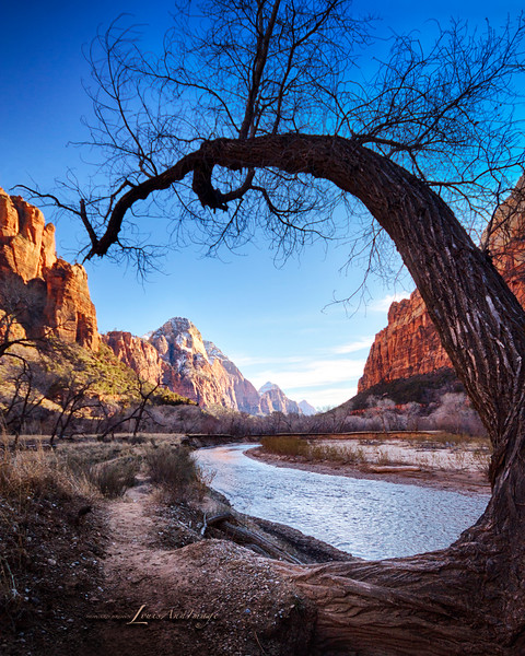Bend...<br /> North Fork of the Virgin River - The Horseshoe at Heaps Canyon, Emerald Pools, Zion National Park, Utah