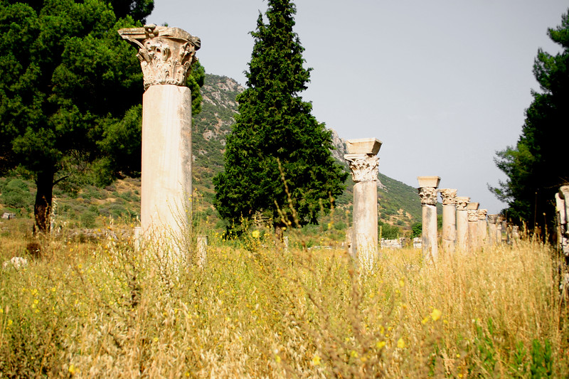 Ephesus was an ancient Roman and Greek city on the west coast of Anatolia, near present-day Selçuk, Izmir Province, Turkey.