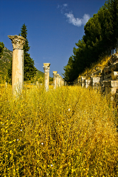 Reportedly this was the cities market - Ephesus was an ancient Roman and Greek city on the west coast of Anatolia, near present-day Selçuk, Izmir Province, Turkey.
