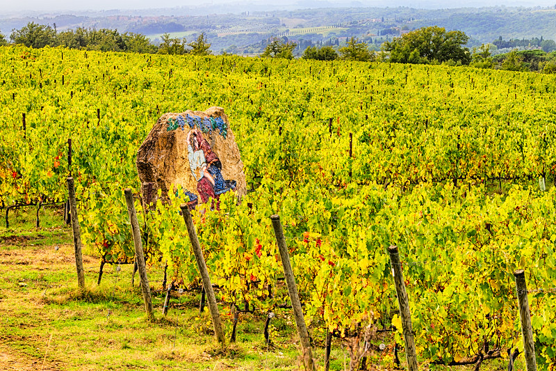 Guardian of the Vines ~ San Felice, Chianti, Toscana