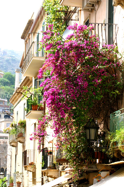 Street Scene - A mountainside city set intentionally on the cliffs to allow its inhabitants to defend themselves from ancient invaders, the streets of Taormina are as picturesque as any in Europe.