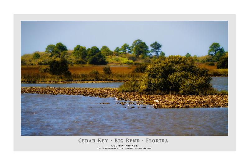 A sort of 'Highwaymen' view - West end, near the air strip - Cedar Key, Florida