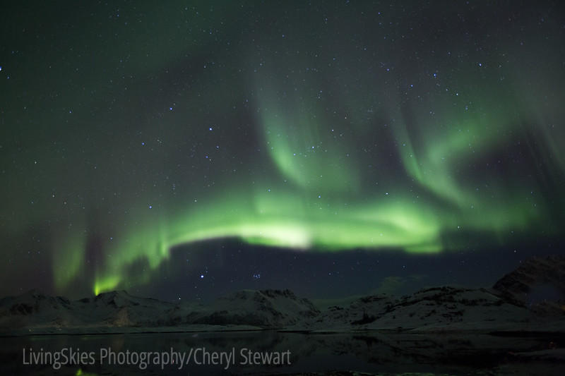 Northern Lights - Lofoten Norway