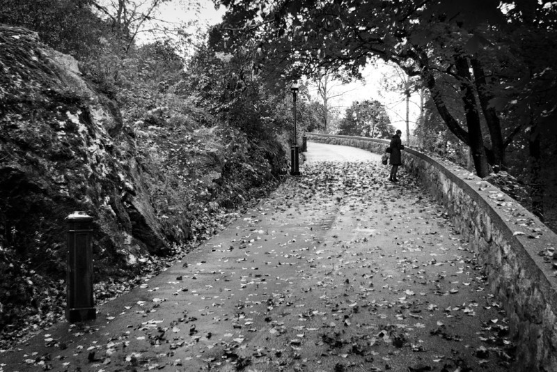 Pathway / Тропинка