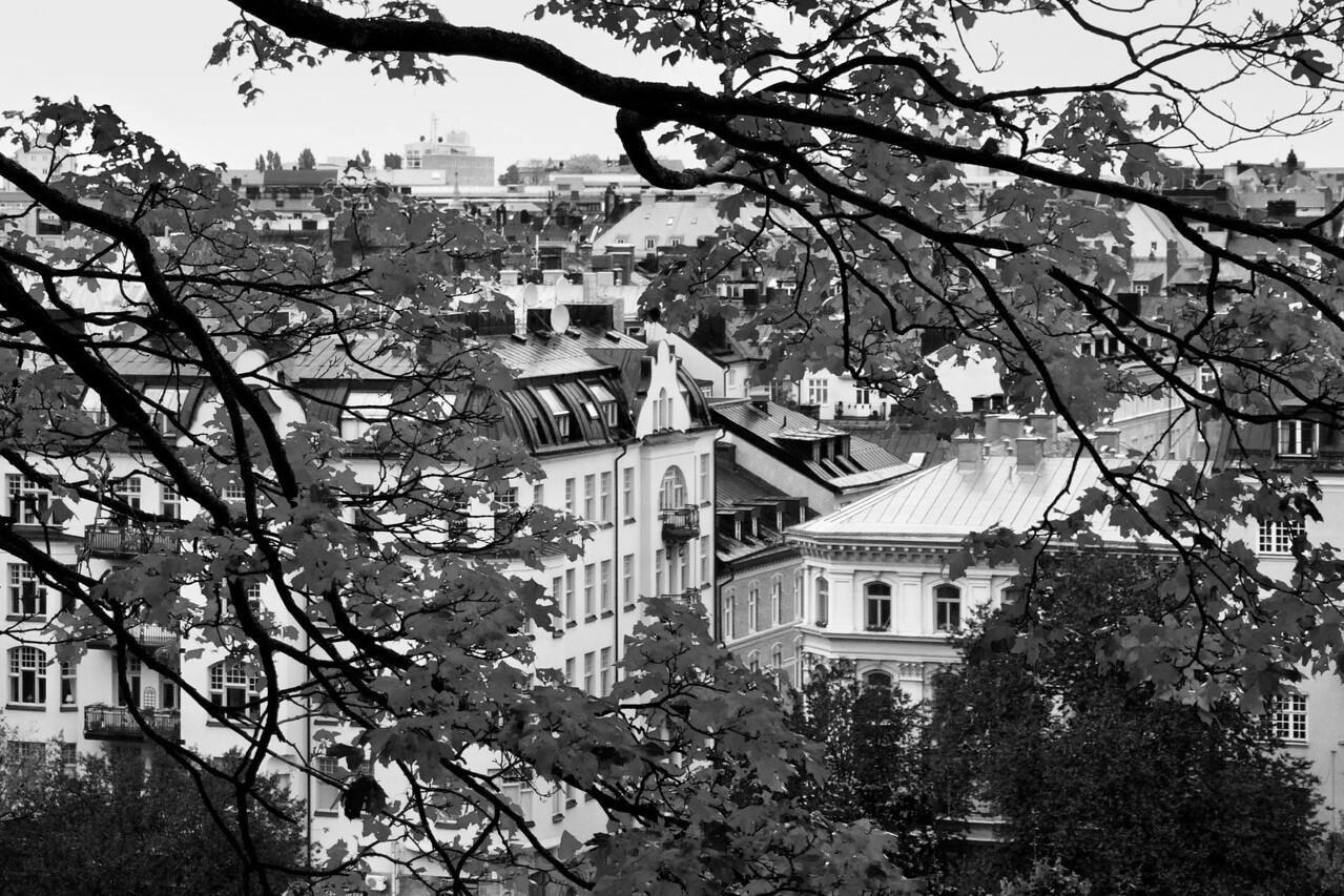 City View / Вид на город